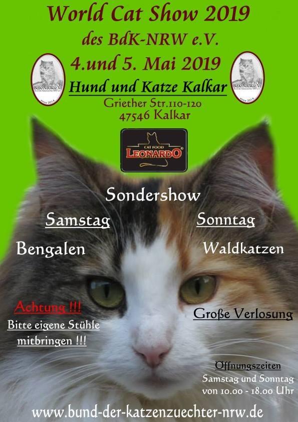 World Cat Show Kalkar am 04 - 05.05.2019