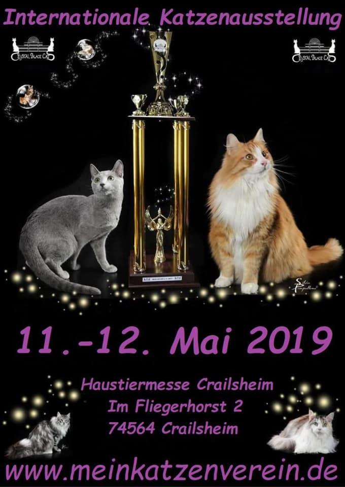 """Internationale Katzenausstellung """"Haustiermesse Crailsheim"""""""