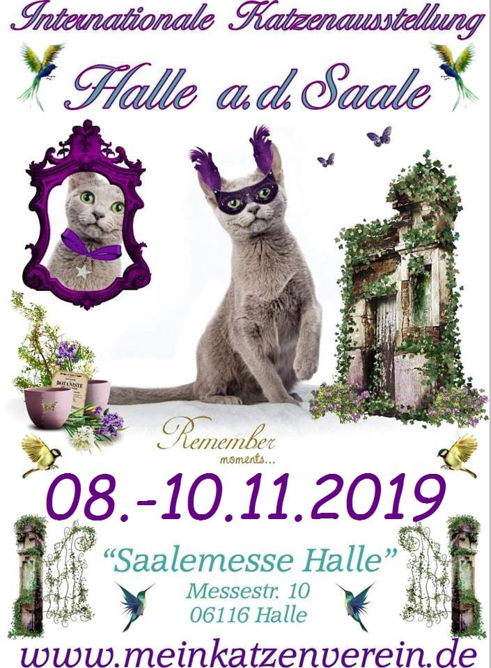 """Internationale Katzenausstellung des CPC e.V.  """"Heimtierschau der Saale-Messe"""""""