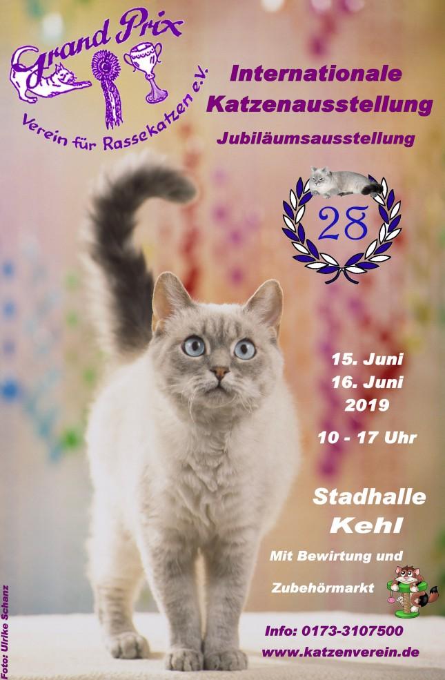 Int. Katzenausstellung - Jubiläumsausstellung
