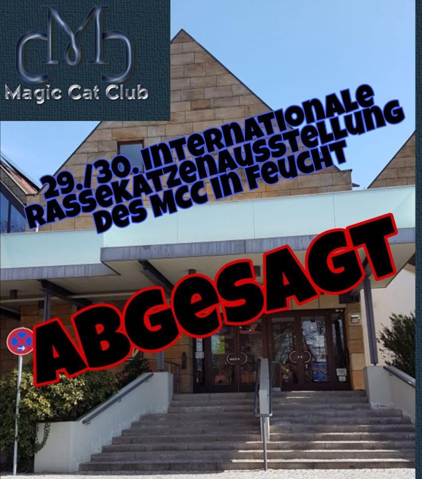 Internationale Rassekatzenausstellung MCC - ABGESAGT!