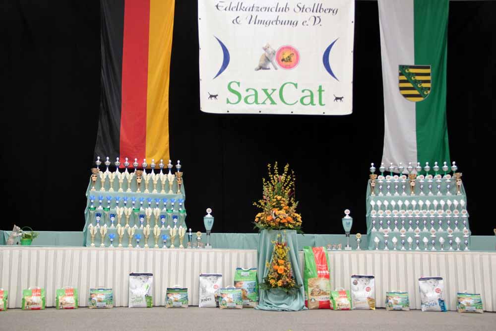 Internationale Rassekatzenausstellung SaxCat 2020