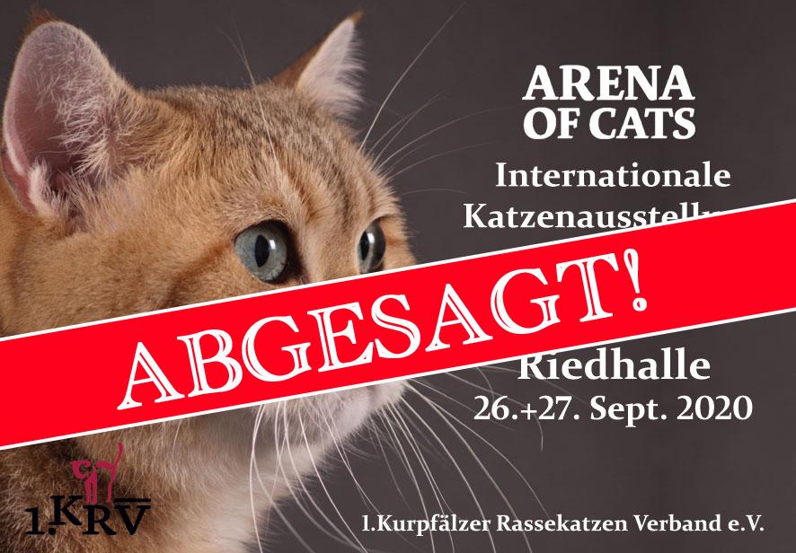 ARENA OF CATS - ABGESAGT!