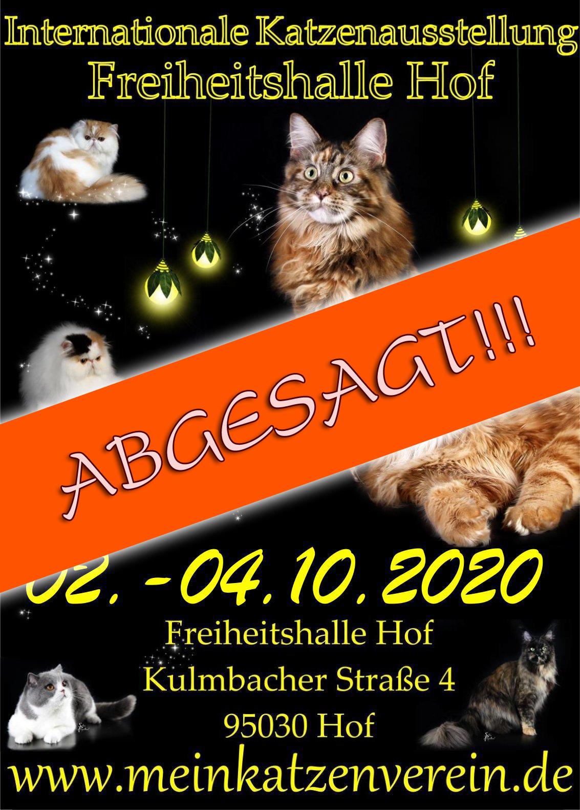 Internationale Katzenausstellung im Rahmen der Messe Hof - ABGESAGT!