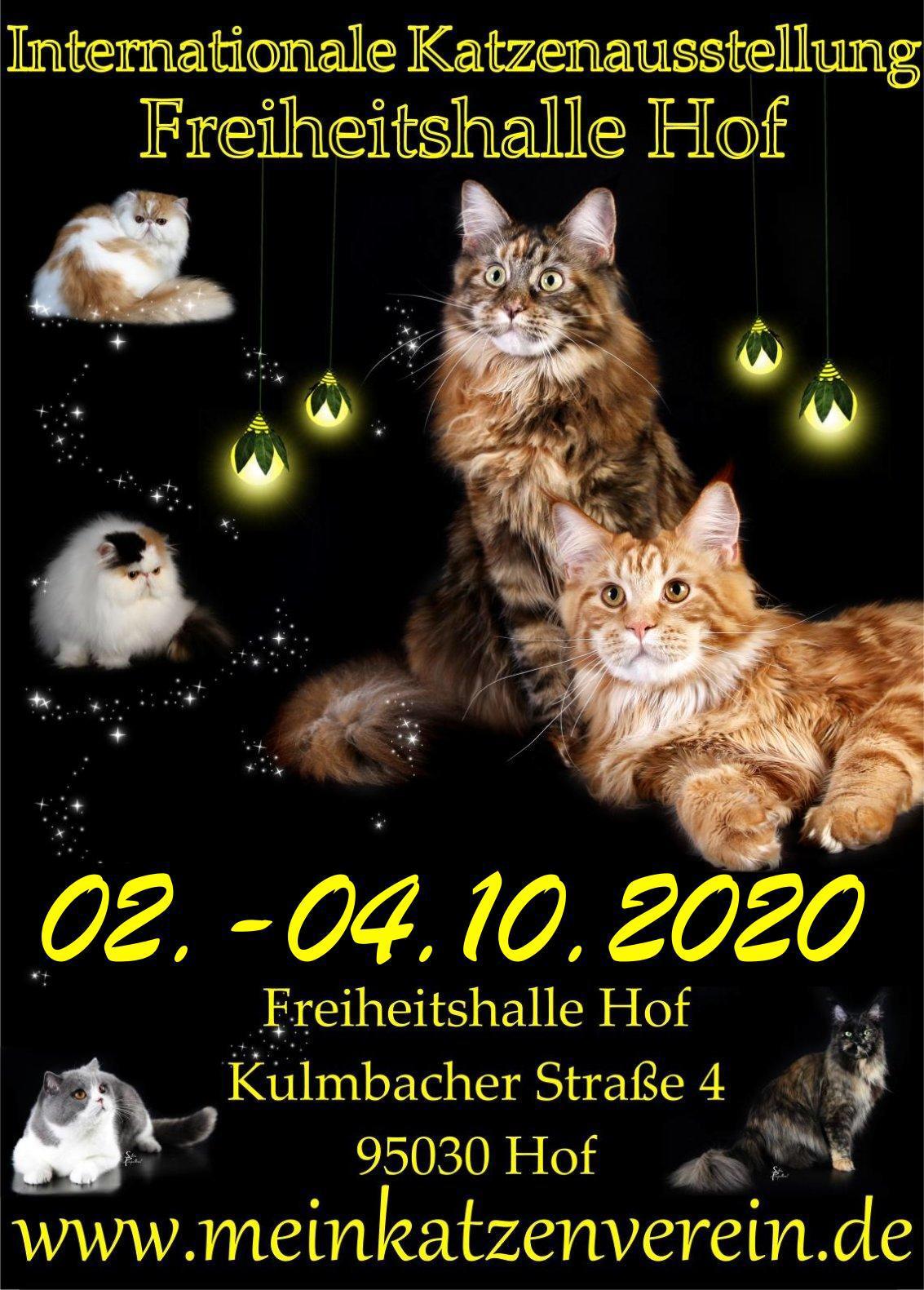 Internationale Katzenausstellung im Rahmen der Messe Hof