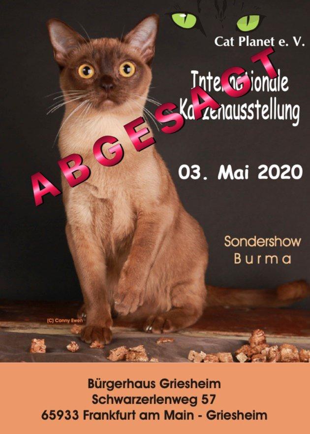 Internationale Katzenausstellung des Cat Planet e.V. - ABGESAGT!
