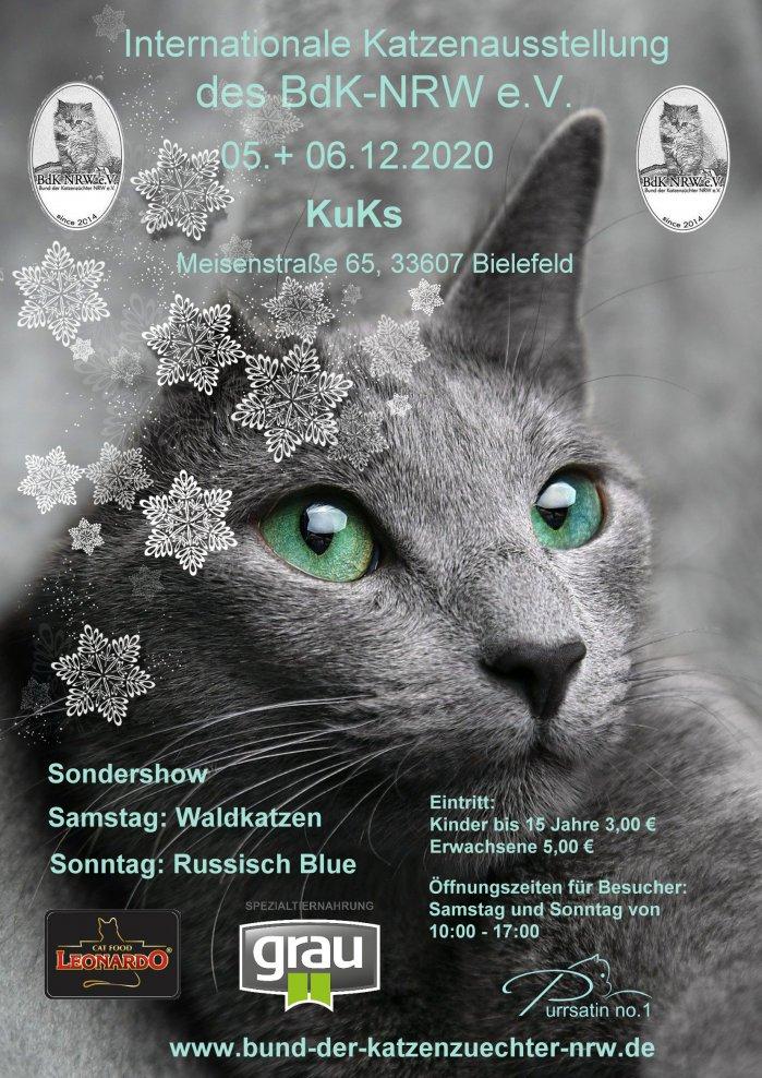 Internationale Katzenausstellung des BDK-NRW e.V.