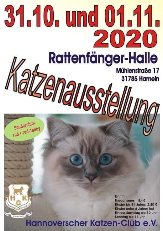 Internationale Katzenausstellung des HKC e.V.