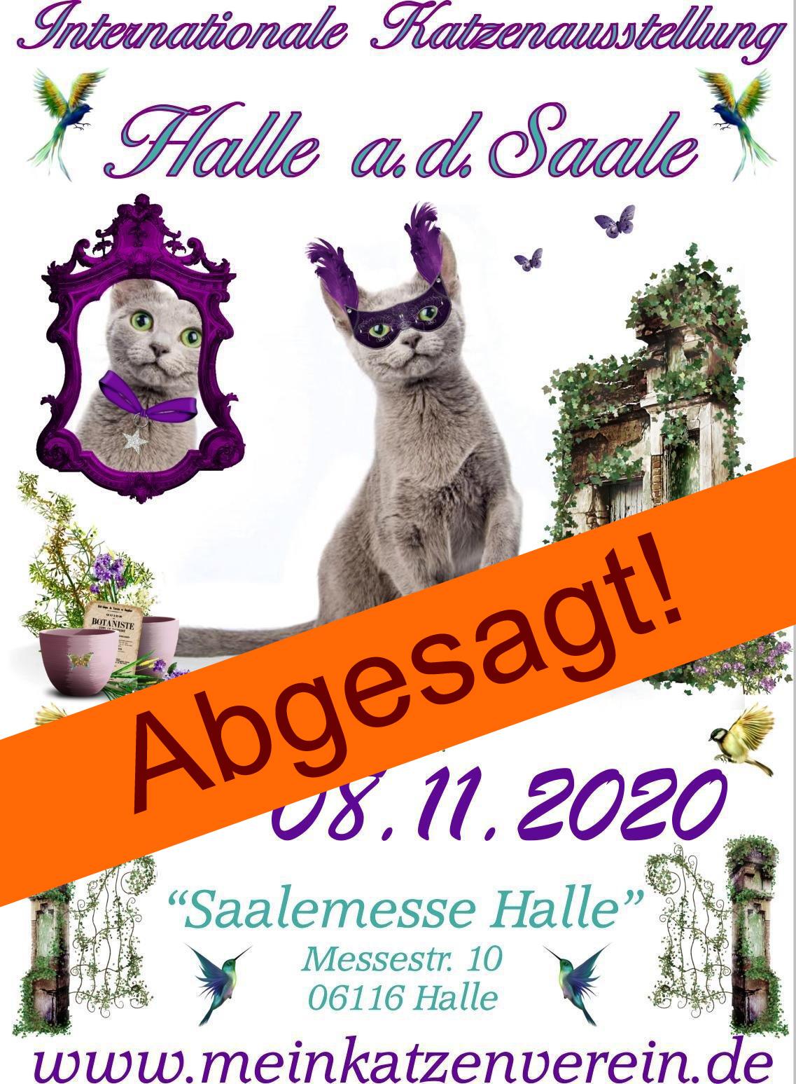 Internationale Katzenausstellung im Rahmen der Saalemesse - ABGESAGT!