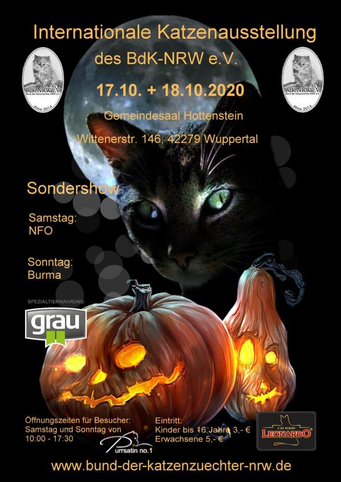 Internationale Katzenausstellung des BSK-NRW e.V.