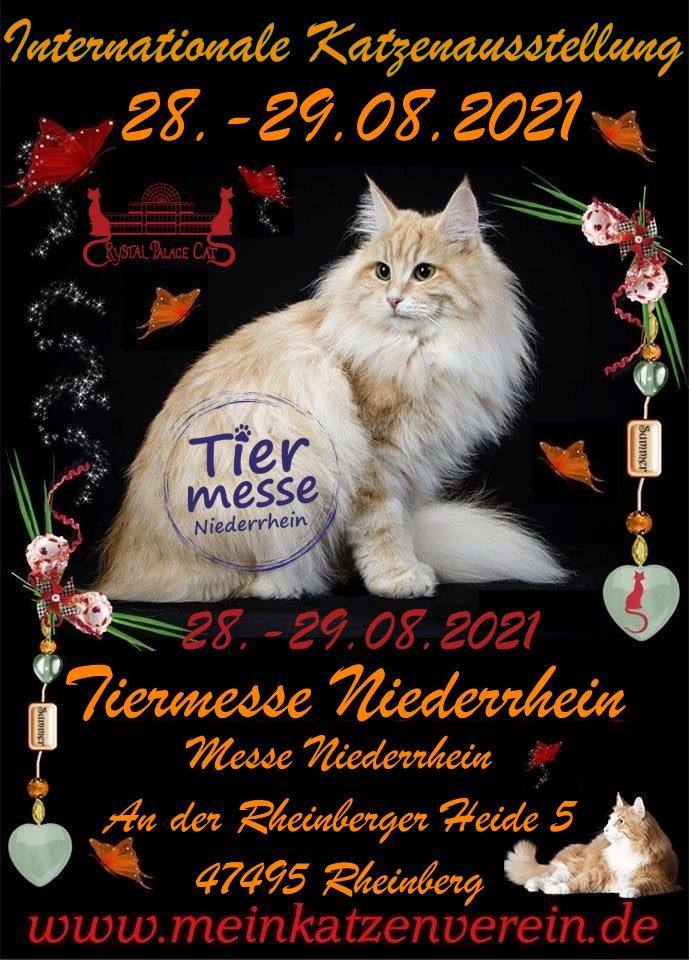 Internationale Katzenausstellung des CPC / Tiermesse Niederrhein