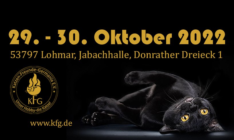 WORLD OF CATS - DIE Weltausstellung!